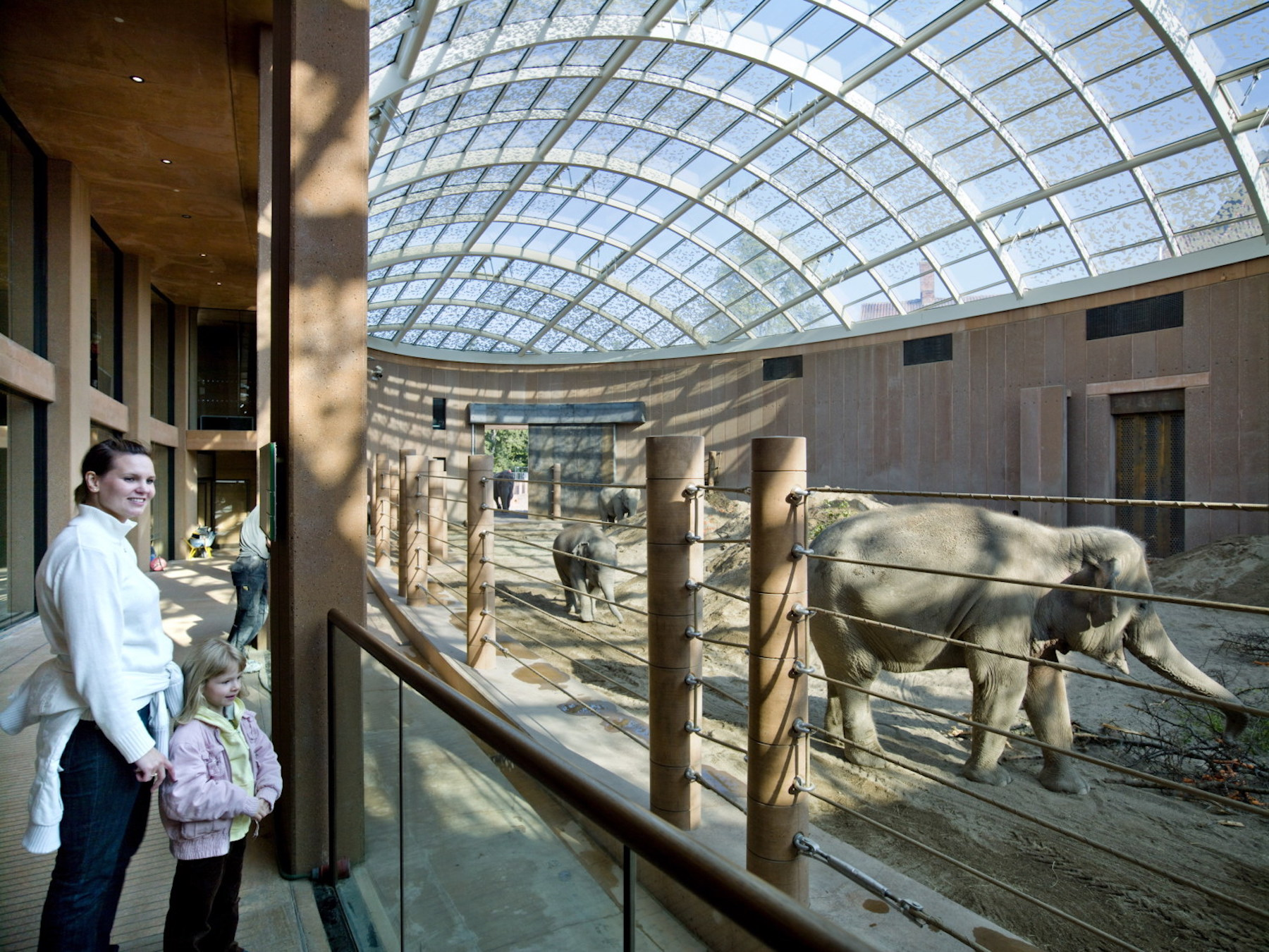 Zoo architecture in the Elephant House by Foster + Partners