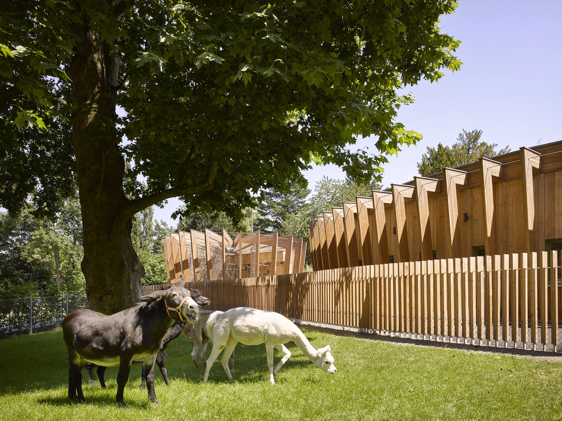 Öhringen Petting Zoo architecture