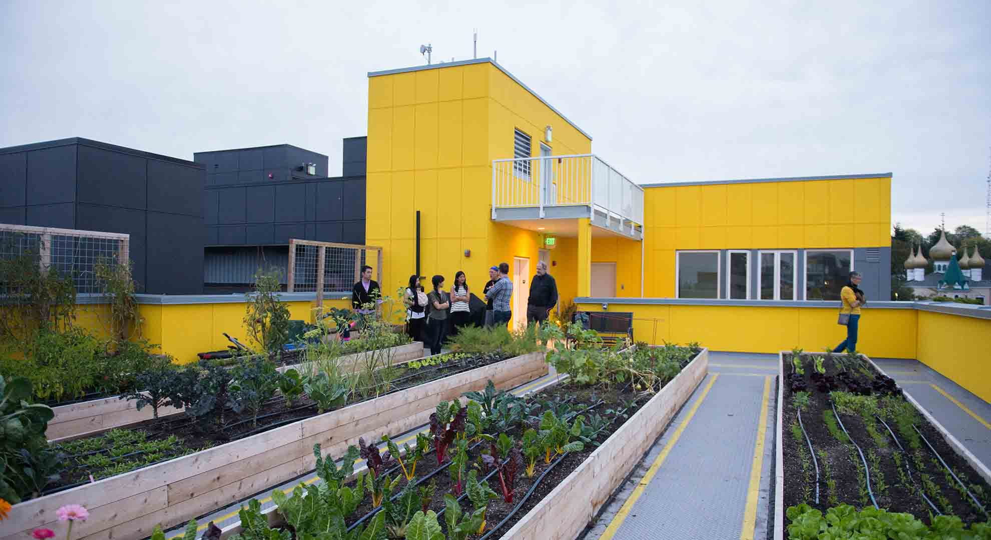 Rooftop farm at Schemata Workshop's Capitol Hill Cohousing development